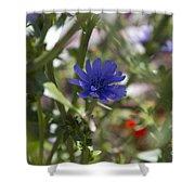 Romaine Lettuce Flower Shower Curtain