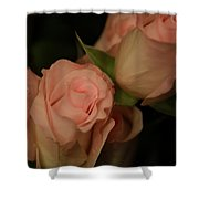 Romance In Pink Shower Curtain
