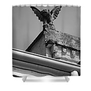Rooftop Chained Gargoyle Statue Above French Quarter New Orleans Black And White Shower Curtain