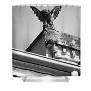 Rooftop Gargoyle Statue Above French Quarter New Orleans Black And White Diffuse Glow Digital Art Shower Curtain by Shawn O'Brien