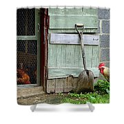 Rooster And Hens Shower Curtain