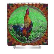 Rooster Colors Shower Curtain