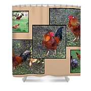 Rooster Red Shower Curtain