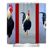 Rooster Triptych Shower Curtain