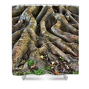 Roots Of Glory Shower Curtain