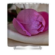 Rose And Silk Shower Curtain