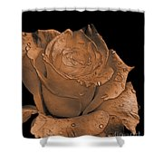Rose Art  Sepia Shower Curtain