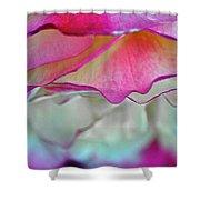 Rose Folds II Shower Curtain
