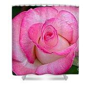 Rose Macro Shower Curtain