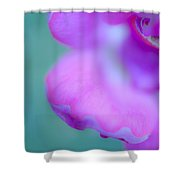 Rose Petal Abstract 2 Shower Curtain
