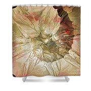 Rose Petal Highway Shower Curtain