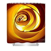 Rose Series - Gold Shower Curtain