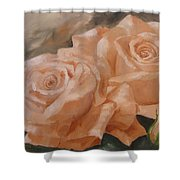 Rose Study Shower Curtain