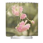 Rose Vine Shower Curtain
