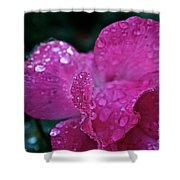 Rose Water Beads Shower Curtain