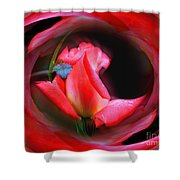 Rosebud Energies Shower Curtain