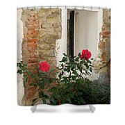 Roses And Antiquity  Shower Curtain