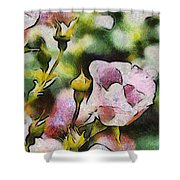 Roses At The Shrine Shower Curtain