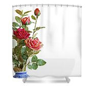 Roses Bouquet Shower Curtain by Carlos Caetano