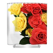 Roses Closeup Shower Curtain