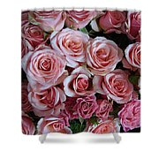 Roses Galore Shower Curtain