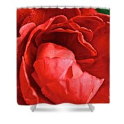 Rosie Red Shower Curtain