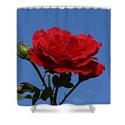 Rosie Skies Shower Curtain