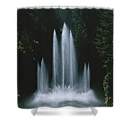 Ross Fountain Dancing In Front Of Lush Shower Curtain