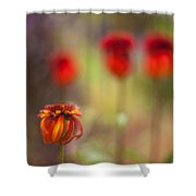 Rosso Beauties Shower Curtain
