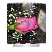 Rosy Reflections Shower Curtain