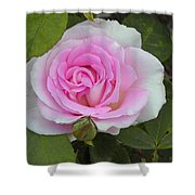 Rosy Shower Curtain