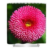 Round Pink Flower Shower Curtain