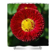 Round Red Flower Shower Curtain