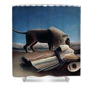 Rousseau: Gypsy, 1897 Shower Curtain