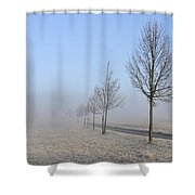 Row Of Trees In The Morning Shower Curtain