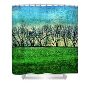 Row Of Trees Shower Curtain