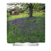 Rowallane Garden, Co Down, Ireland Wild Shower Curtain