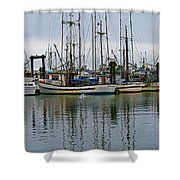 Royal Quest Shower Curtain