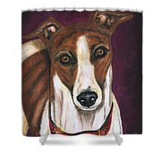 Royalty - Greyhound Painting Shower Curtain by Michelle Wrighton