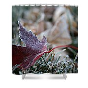 Ruby Frost Shower Curtain
