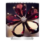 Ruby Ring I. Spirit Of Treasure Shower Curtain by Jenny Rainbow