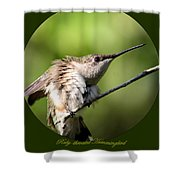 Ruby-throated Hummingbird  - The Stretch Shower Curtain