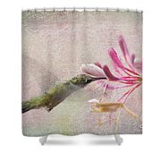 Ruby Throated Hummingbird #3 Shower Curtain