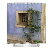 Rue De La Liberte Shower Curtain