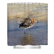 Ruffled Reddish Egret  Shower Curtain