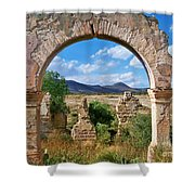 Ruins Of Mineral De Pozos Shower Curtain