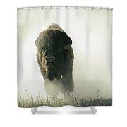 Running Bison Kicking Up Dust Shower Curtain