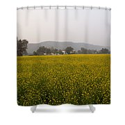 Rural Landscape With A Field Of Mustard Shower Curtain