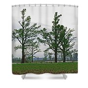 Rural Trees Iv Shower Curtain