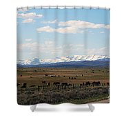 Rural Wyoming - On The Way To Jackson Hole Shower Curtain
